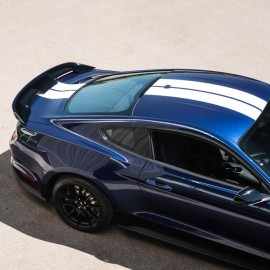 Ford Mustang Custom Style Pedestal Rear Deck Spoiler 2015 - 2016 / MUS15-PED